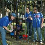 CLIA Volunteer Day1.jpg