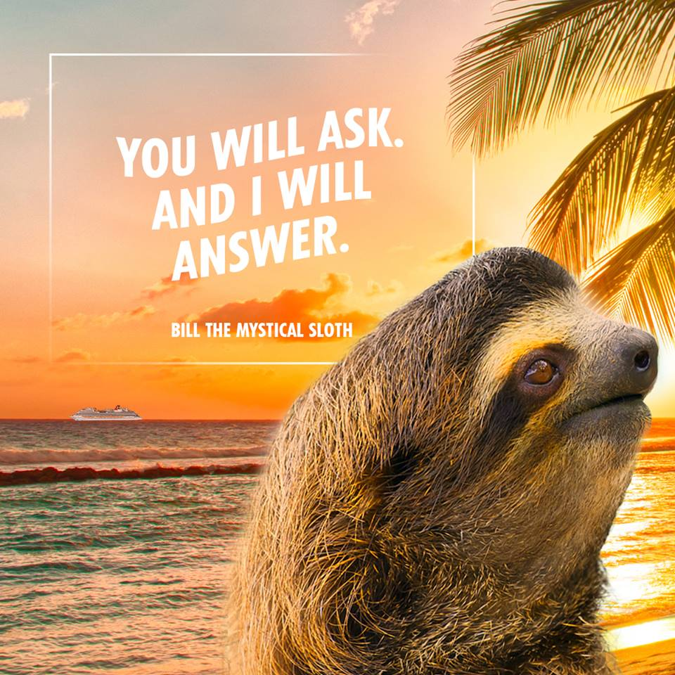 Meet Bill, the Mystical Prognosticating Sloth from Carnival Cruise Line Who Will Predict the Length of Summer This Year During Special Facebook Live Broadcast Tomorrow
