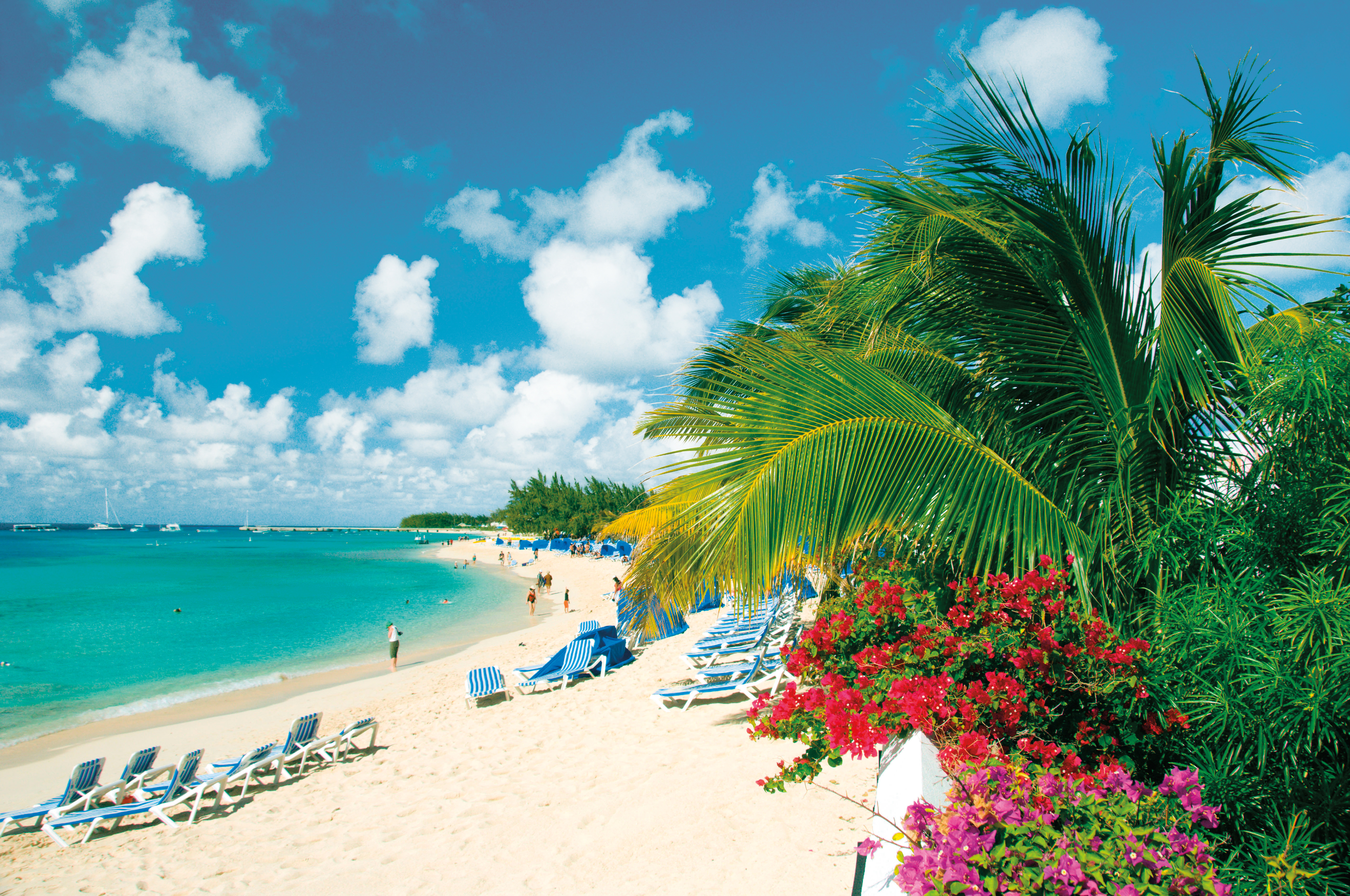 Carnival Cruise Line's Mardi Gras Opens for Sale as Company Announces Inaugural Season Itineraries